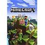 Microsoft Minecraft 44Z00154