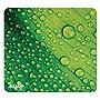 Allsop Naturesmart Mouse Pad Leaf Raindrop 8 1/2 x 8 x 1/10 31624