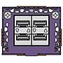 Extreme Networks 5520-VIM Interface Module 5520VIM4YE