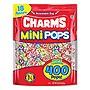 Mini Lollipops 18 Assorted Flavors 71.96 oz CRM34006